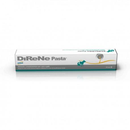 Geulincx DiReNe - 15ml - pasta chroniąca nerki psów, kotów