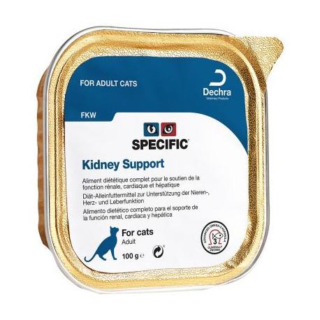 Dechra SPECIFIC FKW Kidney Support - 100g - dieta lecznicza dla kotów