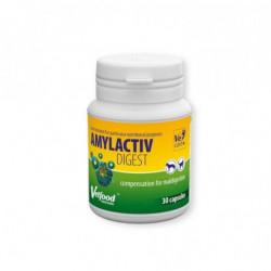 Vetfood Amylactiv Digest - preparat z enzymami trawiennymi dla psów, kotów